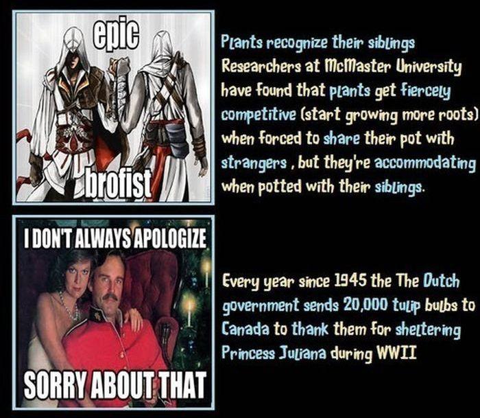 Unbelievable but True Facts, part 6