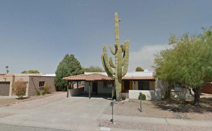 Saguaro Cactus Destroyed Carport with Three Cars