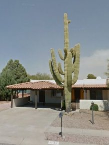 Saguaro Cactus Destroyed Carport with Three Cars