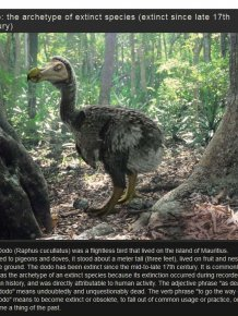 Amazing Extinct Animals