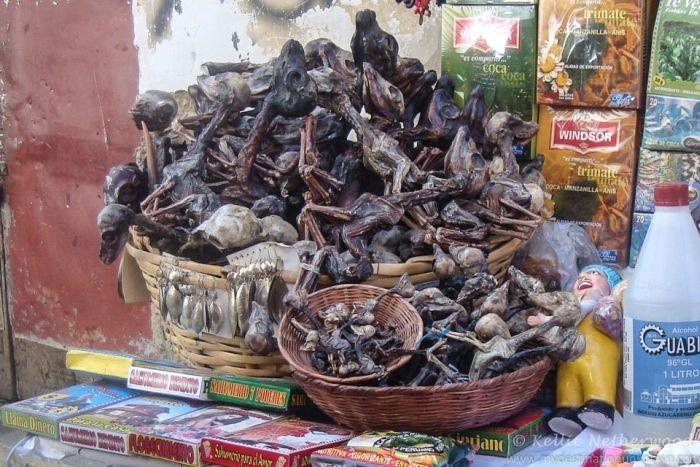 Witchcraft Markets