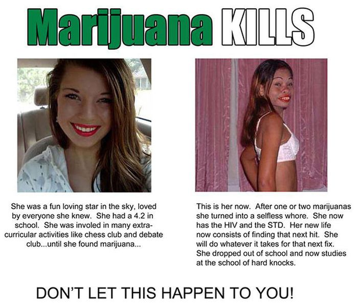 Marijuana Disinformation