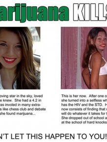 Marijuana Disinformation