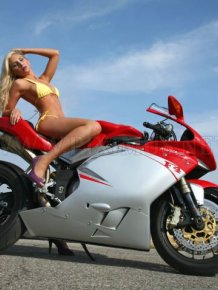 Sexy babes on Ducatis