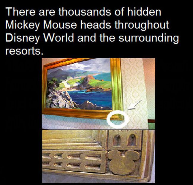 Interesting Facts About Disney Parks