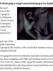 The Most Dangerous US Gangs