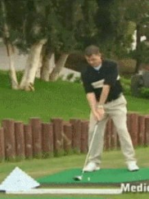 Combined GIFs