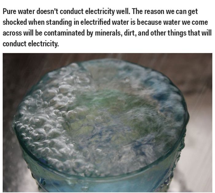 These Science Facts Are Totally Wrong