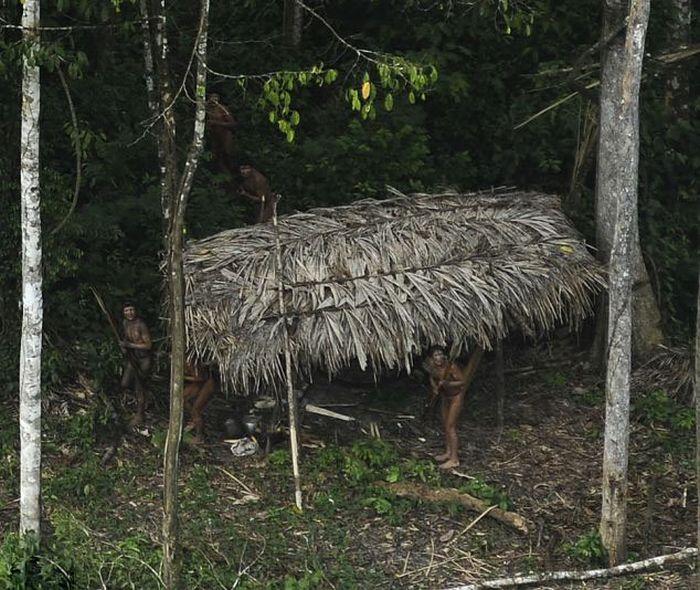 Startled Amazon Tribesmen