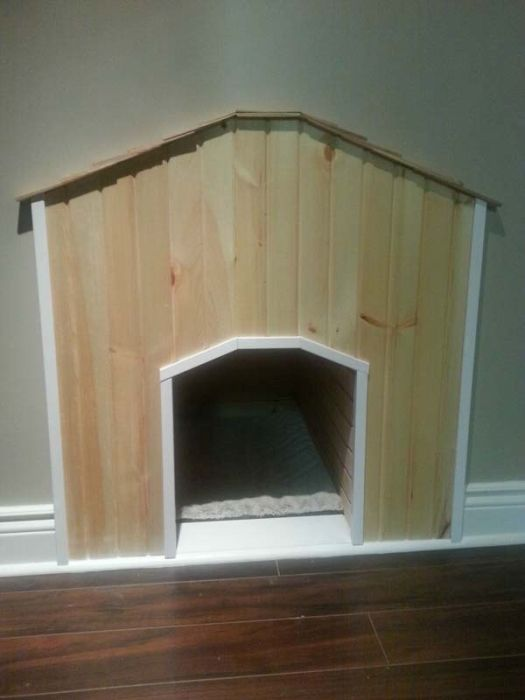 House for a Dog