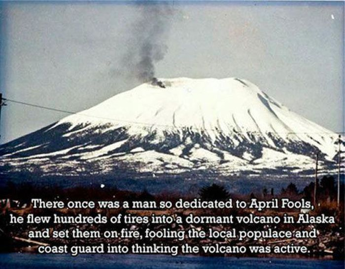 Interesting Facts and Stories That Are Odd