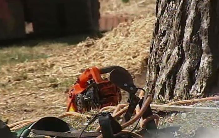 Chainsaw Stuck in Neck