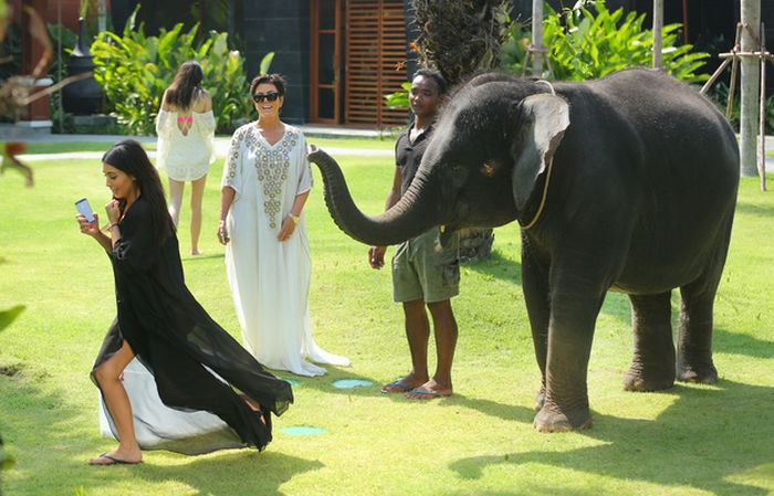 Kim Kardashian Scared By Elephant