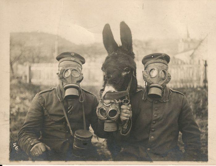 Rare Historical Photos, part 3