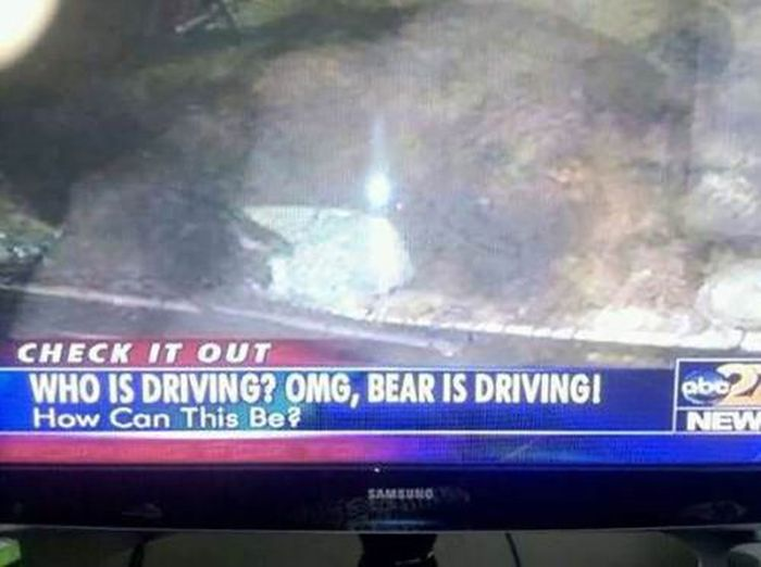 Weird Local News Captions, part 8