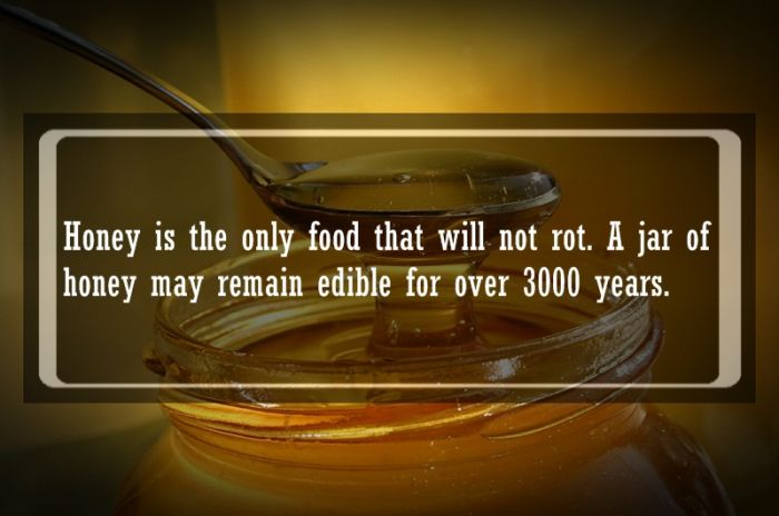 Food Hacks And Facts