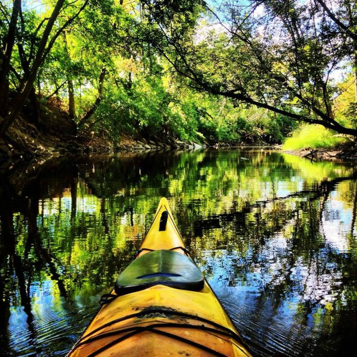 You've Never Kayaked Like This Before