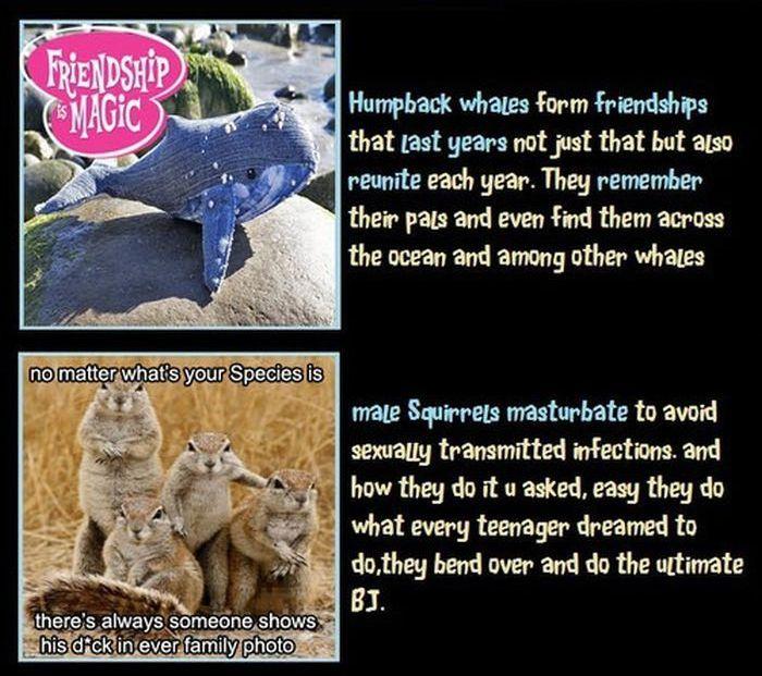 Unbelievable But True Facts, part 7