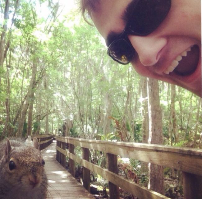 This Guy Gets Owned By A Squirrel