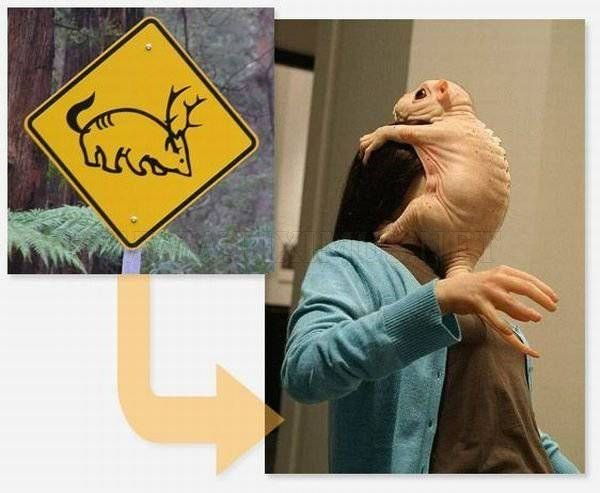 Weird Signs and Their Photo Explanations