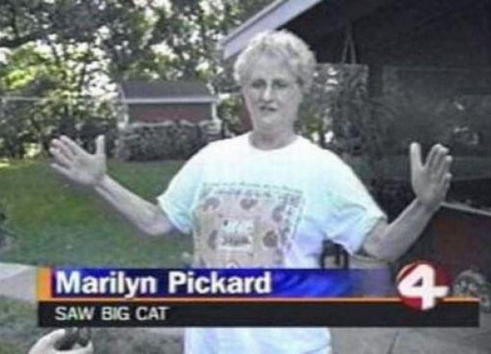 Weird Local News Captions, part 9