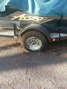 See What Creature Infested This Tire Overnight