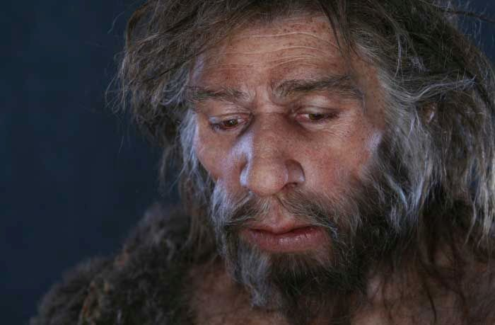 Hominid Reconstructions Are A Blast From The Past