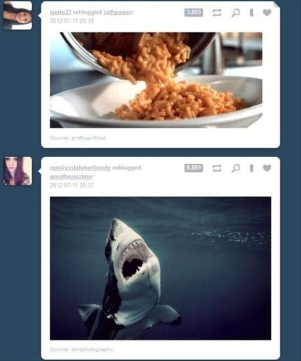 These Tumblr Posts Were Perfectly Timed