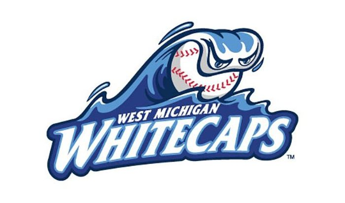 MLB Team Logos From The Minor Leagues