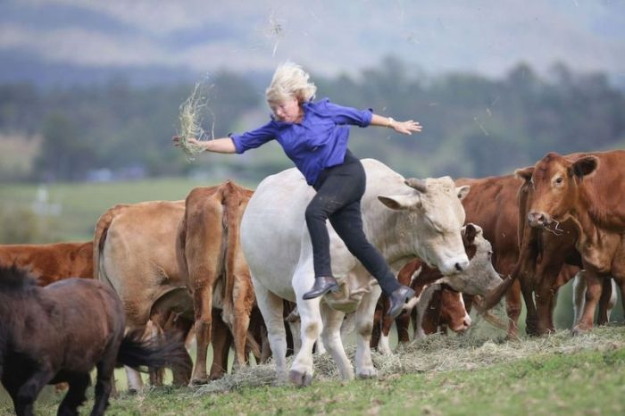 This Woman Gets Owned By A Bull