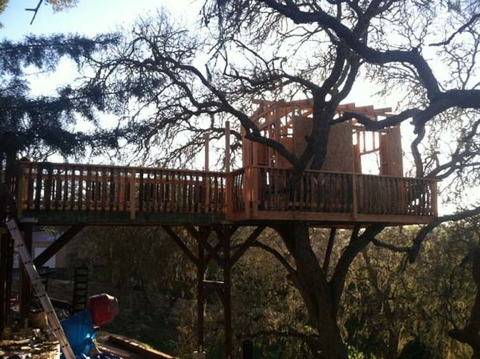 Is This The Coolest Tree House Ever?