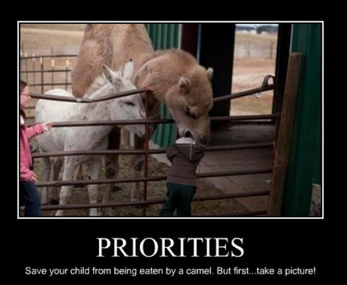 Demotivational Memes For The Real World