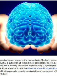 The Human Brain Is More Powerful Than You Know
