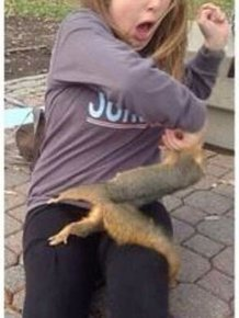 Squirrel Sinks His Teeth Into Innocent Woman