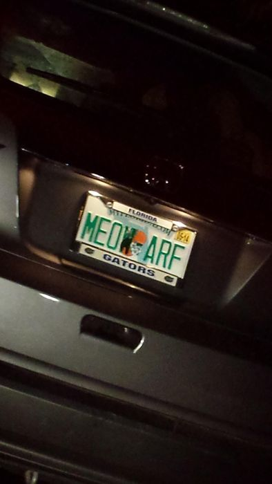 The Coolest Custom License Plates Ever