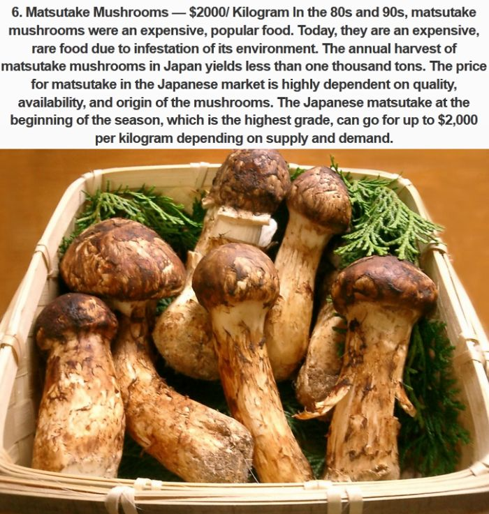 The Most Expensive Foods You Can Buy In Japan