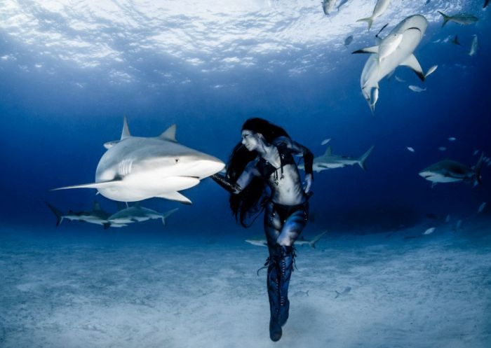 Amazing Underwater Photoshoot With A Shark