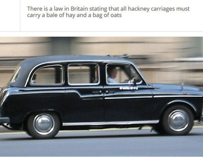 The Stupidest Driving Laws You Never Knew Existed