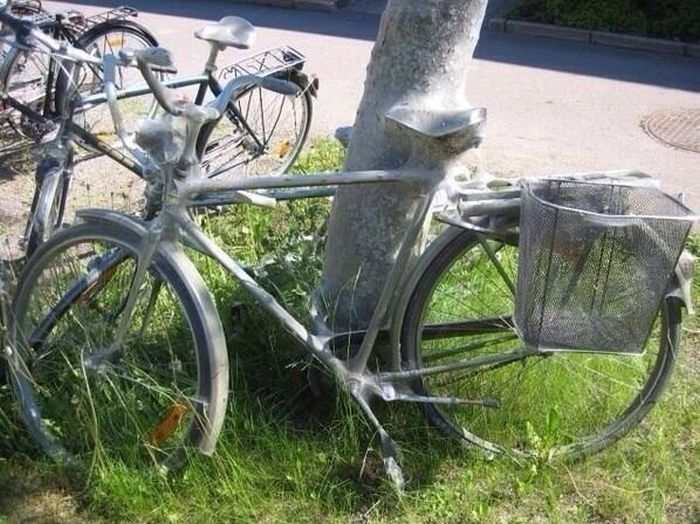 This Bike Now Belongs To The Bugs