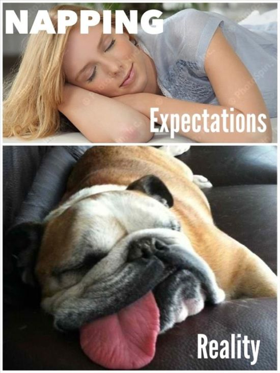 The Best Of Expectations Vs Reality
