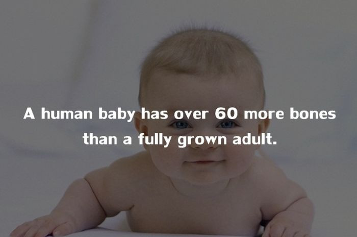 Crazy Things You Didn't Know About The Human Body