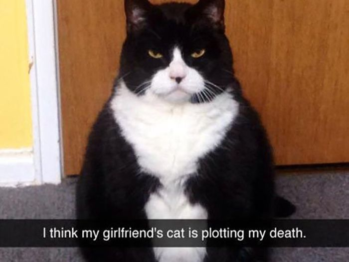 The Most Epic Snapchats Ever
