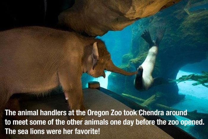 The Most Heartwarming Photos Ever