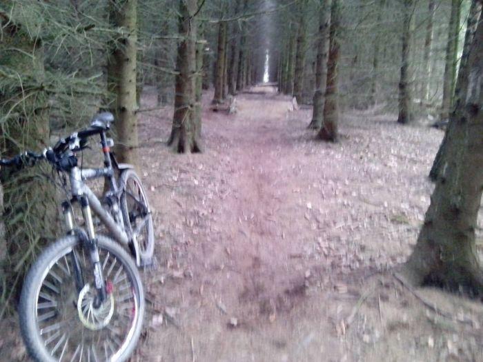 Who Would Put A Tripwire On A Bike Trail?