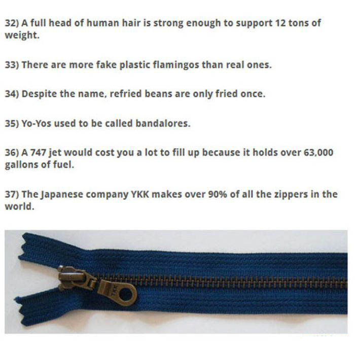 Awesome Observations About Everyday Items