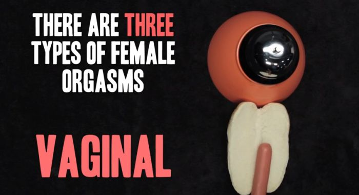 Facts You Didn't Know About Female Masturbation