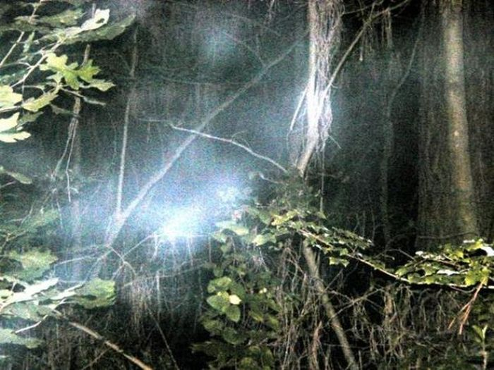 The Most Haunted Outdoor Areas In The World