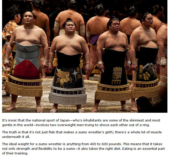 The Daily Diet Of A Sumo Wrestler
