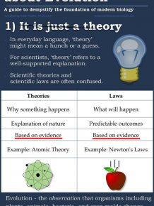 The Evolution Argument Continues