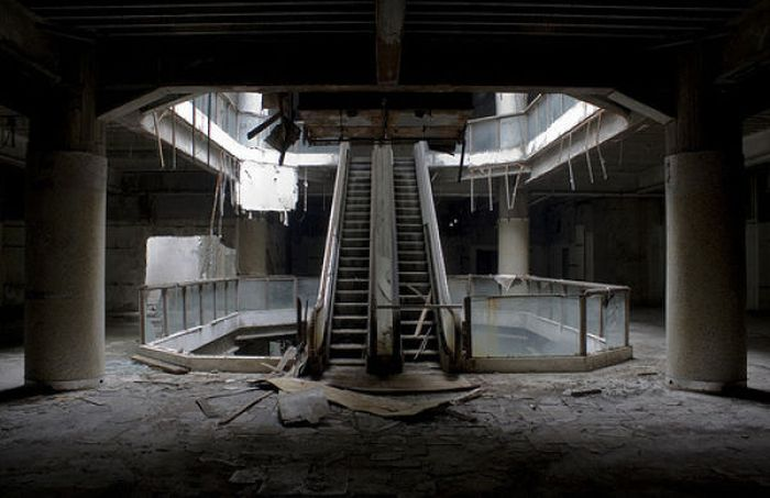 Look Who Moved Into This Abandoned Mall